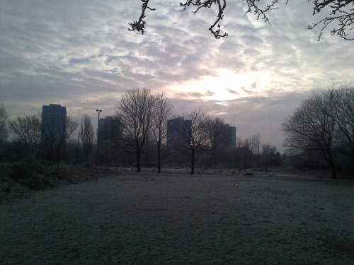 Tower blocks looking mysterious in the frost
