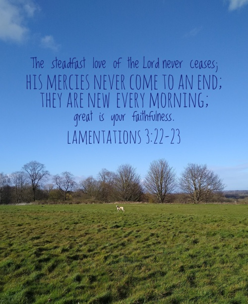 [Text on picture of blue sky, trees, green grass, dog] The steadfast love of the Lord never ceases; his mercies never come to an end; they are new every morning; great is your faithfulness.