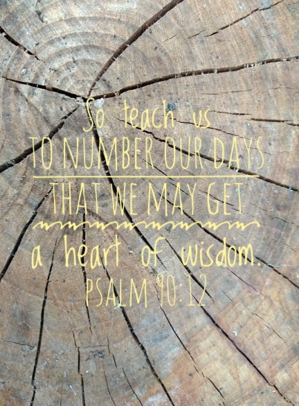 [Text over photo of cut tree trunk] So teach us to number our days that we may get a heart of wisdom.